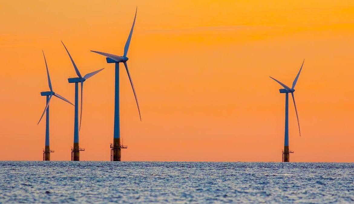 The Effects Of Offshore Wind Farms On Marine Life
